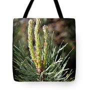 Fresh Pine Sprouts Tote Bag