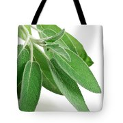 Fresh Sage Tote Bag