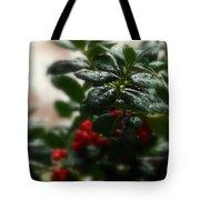 Fresh Winter Rain Two Tote Bag