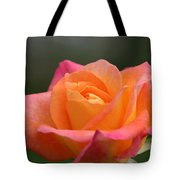 Friday's Find Tote Bag