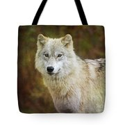 Friendly Beauty.. Tote Bag