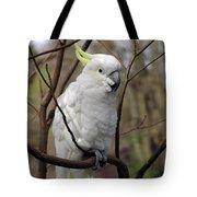 Friendly Cockatoo Tote Bag
