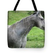 Friendly Gray Horse Tote Bag