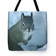 Friendly Squirrel Tote Bag