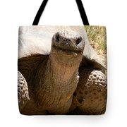 Friendly Tortoise Tote Bag