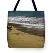 Friends At The Beach Tote Bag