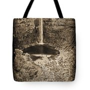 Friends At The Falls Tote Bag