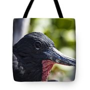 Frigate Bird- Hawaii Tote Bag