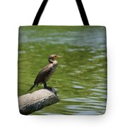 Frigate Bird Watching Estuary Tote Bag by Christine Till