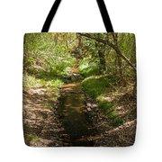 Frijole Creek Bandelier National Monument Tote Bag