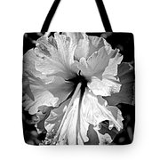 Frills And Hibiscus Flowers Tote Bag