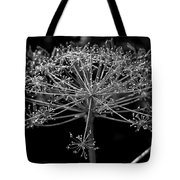 Frills In Black And White Tote Bag