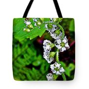 Fringe Cups On Clatsop Loop Trail In Ecola State Park-oregon Tote Bag