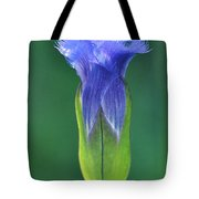 Fringed Gentian With Dew Drop Tote Bag