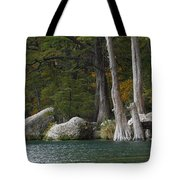 Frio River 2 Tote Bag