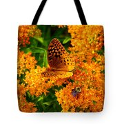 Fritillary On Butterfly Weed Tote Bag