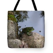 Frog At Edge Of Pond Tote Bag