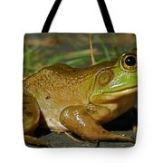 Frog At Night Tote Bag