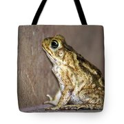 Frog-facing The Wall Tote Bag by Miguel Hernandez