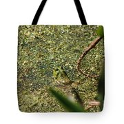 Frog In Pond Tote Bag