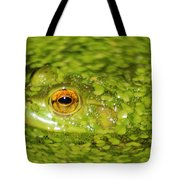 Frog In Single Celled Algae Tote Bag