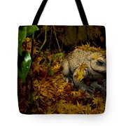 Frog In The Fall Tote Bag