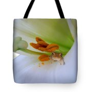 Frog In The Lily Tote Bag