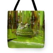 Frog On Lily Pad Tote Bag