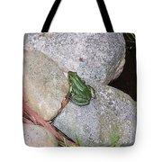 Frog On Rocks Tote Bag