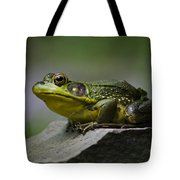 Frog Outcrop Tote Bag