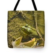Frog Thinks He's Hidden Under A Twig Tote Bag