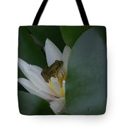 Frog Tucked In A Water Lily Tote Bag