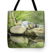 Bull Frog On A Rock Tote Bag