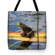 Froggy Reflections Tote Bag