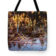 Froggy Sunset Tote Bag