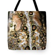 Frogs Back Tote Bag