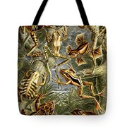 Frogs Frogs And More Frogs Tote Bag