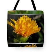 From Bud To Bloom - Coreopsis Named Early Sunrise Tote Bag