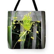 From Bud To Bloom - Fireworks Allium Tote Bag