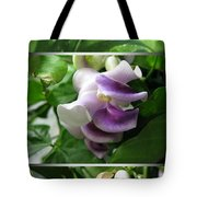 From Bud To Bloom - Phaseolus Caracalla Tote Bag