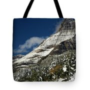 From Fall To Winter Tote Bag