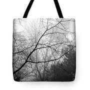 From Hence We Come Tote Bag