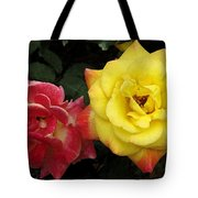 Red To Yellow Tote Bag
