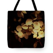 From The Darkness Into The Light Tote Bag