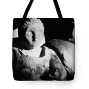 From The Earth  Tote Bag