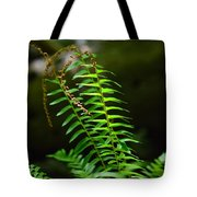 From The Forest Floor Tote Bag