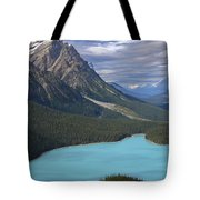 From The Lookout Tote Bag