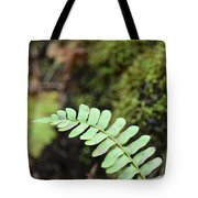 Frond Tote Bag