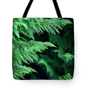 Fronds Of The Leyland Cypress Tote Bag
