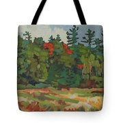 Front Porch View Tote Bag